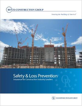 BCG-Safety-Loss-Prevention-Brochure
